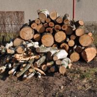 Bauvorbereitung: notwendige Arbeiten auf dem Grundstück