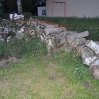 Holz für den Kamin? Aber erst sägen, hacken und Holz spalten!