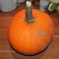 Halloween – Kürbis mit Monster-Gesicht schnitzen
