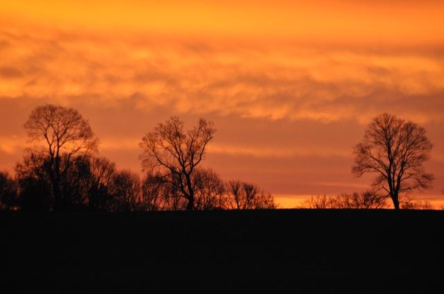 Hinterm Haus: Sonnenaufgang in Neuenhagen bei Berlin