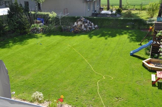 Ende Mai nach erfolgreicher Rasenpflege