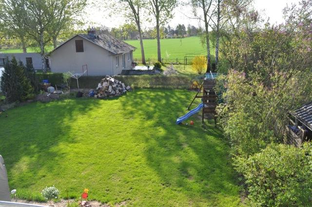Rasenpflege im Mai