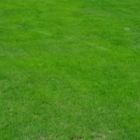Gartenwasser – Zähler, Kosten & Anmeldung beim Hausbau