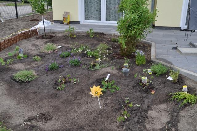 Neuanlage des Blumenbeet / Pflanzenbeet