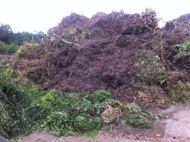 Entsorgung von Grünschnitt und Garten-Abfall wie Rasen & Äste