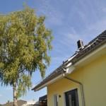 Bevor die Hausbau-Kosten in den Himmel steigen