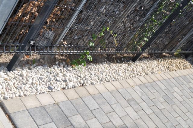 Zierkies / Quarz zur Begrenzung des Weg
