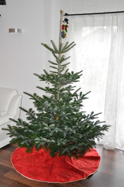 Weihnachtsbaum noch ohne Schmuck