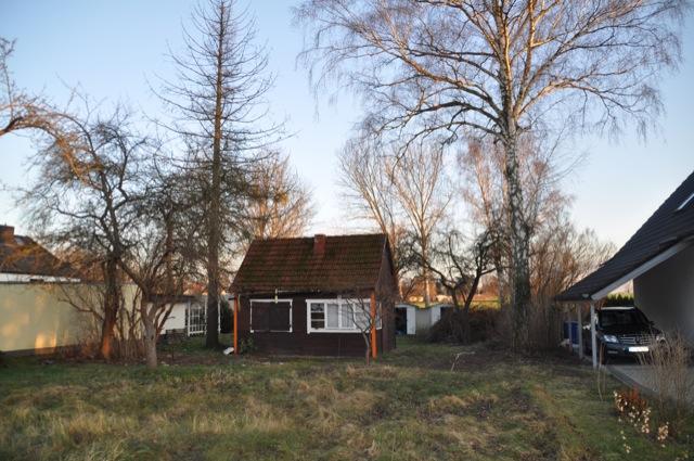 Ausgangslage auf dem Grundstück: Altes Haus + Bäume