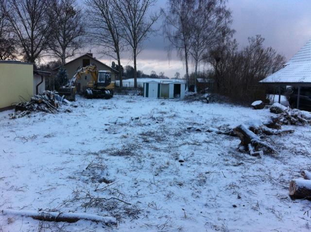 Baumfällungen, Abriss und Schnee