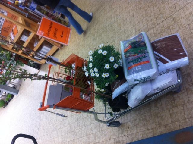 Einkaufswagen bei Hornbach: Pflanzen, Sträucher, Erde