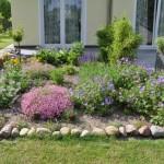 Blumen im Garten -Tolles Wachstum im Mai