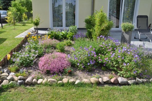Vorher Nachher 1 Woche Blumen Pflanzen Wachstum Hausbau Blog