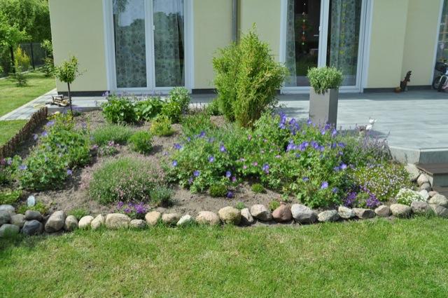 Blumenbeet im Garten - im Mai fängt es an zu wachsen