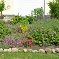 Deutschland summt – Gartengestaltung für den Bienenschutz
