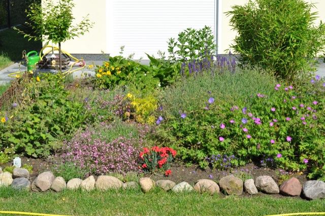 Gartenbeet: Bepflanzung mit Blumen und Stauden