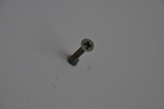 Schraube in den Dübel eingeschraubt