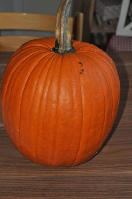 Ausgangsbasis für die Deko: Unser Kürbis zu Halloween