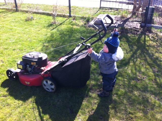 Rasenmähen übernehmen bei uns die Kinder