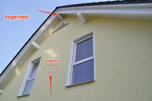 Vogelnest mit Schmutz an der Hauswand
