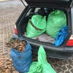 Transport der Gartenabfälle im Auto