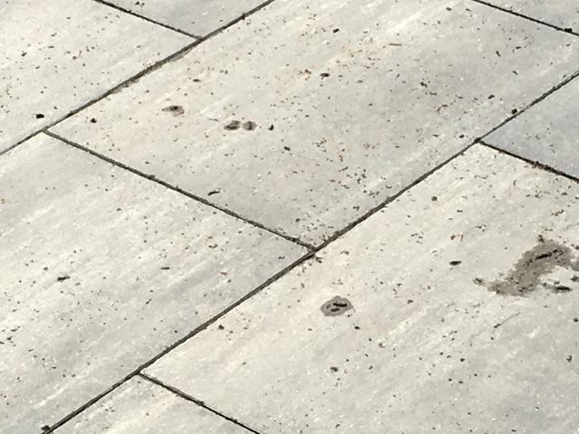 Mit dem Hochdruckreiniger die Beton-Terrassenplatten reinigen