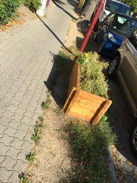 Hochbeet als Begrenzung des Gehwegs mit Pflanzen