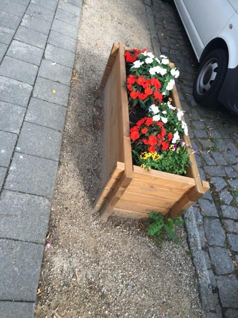 Hochbeet mit Blumen zur Gestaltung der Strasse und Gehweg
