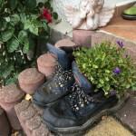 Bepflanzung Arbeitsschuhe