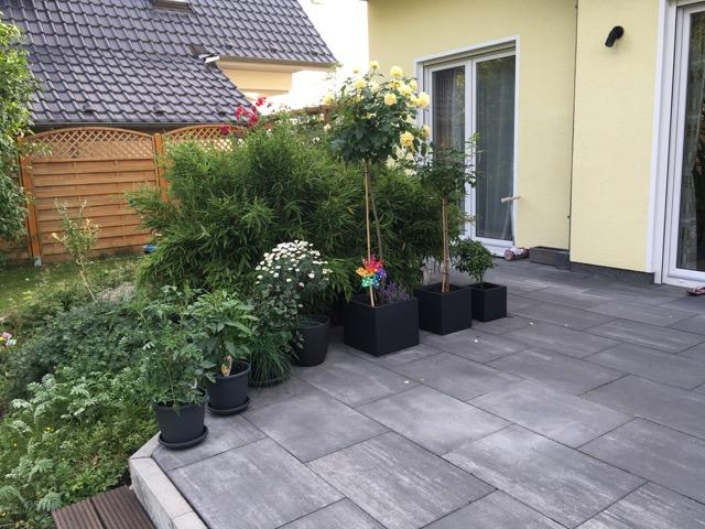 Pflanzen im Kübel auf der Terrasse