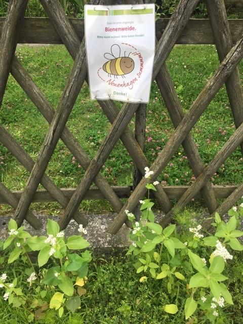 Aktionsschild Neuenhagen summt vor der Bienenweide