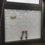 Blickdichtes Plissee als Sichtschutz für bodentiefes Fenster