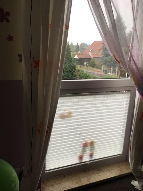 Sichtschutz für bodentiefes Fenster: unser Plissee