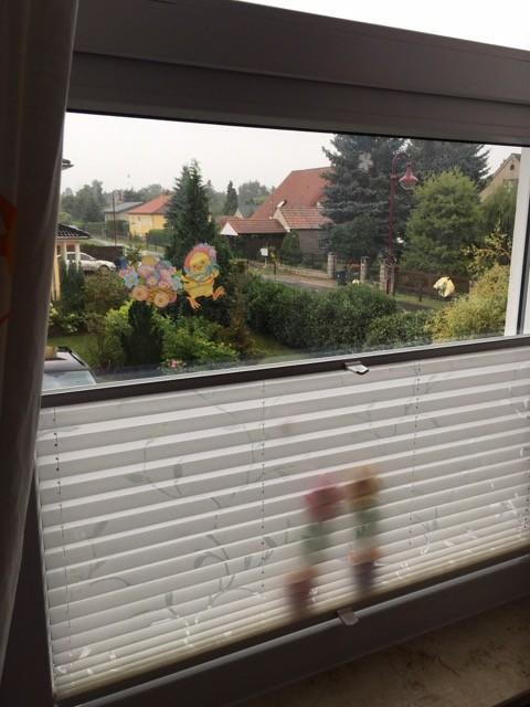 bodentiefes Fenster mit Sichtschutz