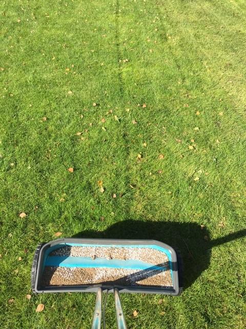 Dank Streuwagen und dessen Spuren den Rasendünger gleichmässig verteilen