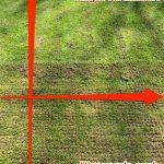 Tipps im den Rasen richtig zu Vertikutieren: Längs und Quer